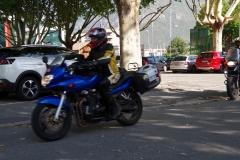 IMGP6511